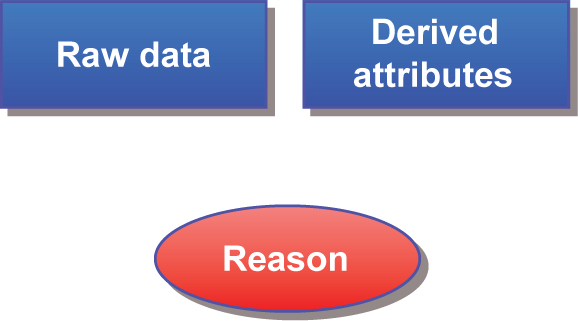 Raw data, Derived attributes, and Reason